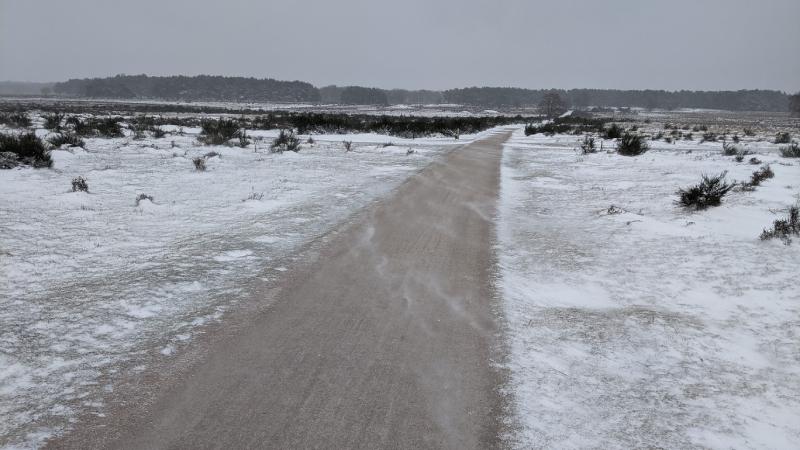 Sneeuw op de hei bij Hilversum